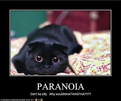 paranoia lol cat