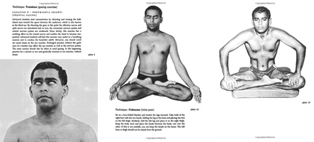 complete yoga poses book illustrated