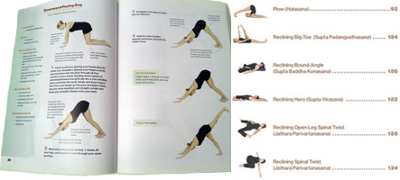 hatha yoga poses book
