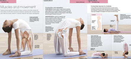 yoga home practice pose book