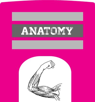 yoga-anatomy-books