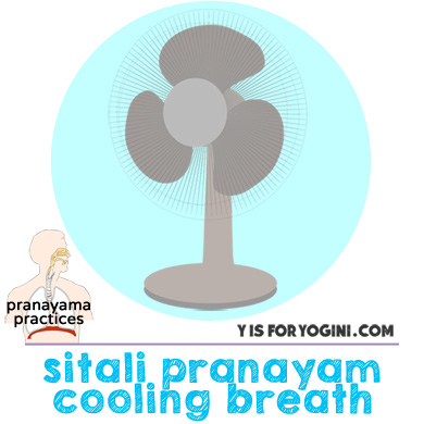 pranayama exercises cooling breath sitali pranayam