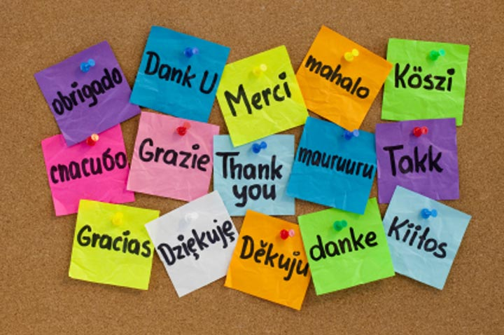 thank you in many languages cork board